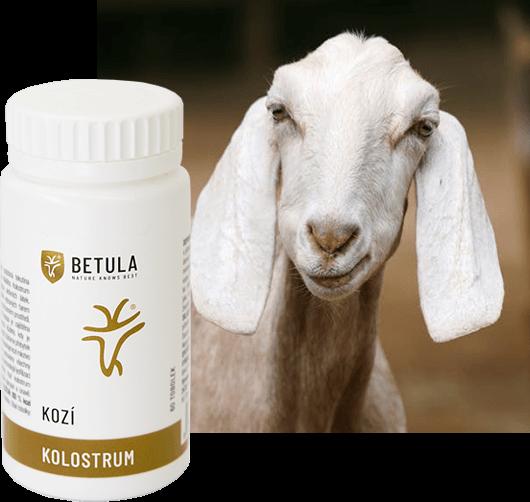 KOZÍ KOLOSTRUM product-goat
