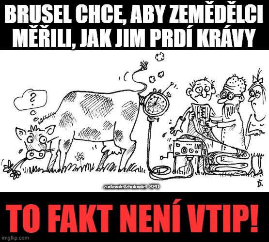 Brusel chce, aby zemědělci měřili, jak jim prdí krávy