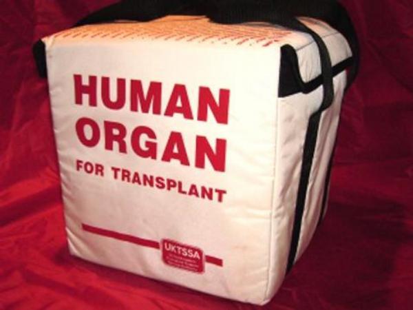 metody čínských koordinátorů transplantací orgánů