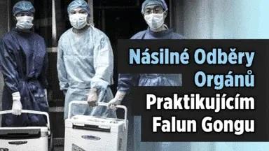 neetické praktiky transplantačního průmyslu a dárcovství orgánů v Číně