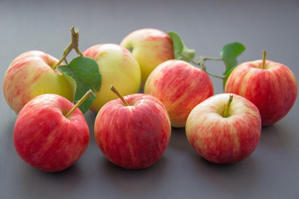 Evropská unie a velikost jablek