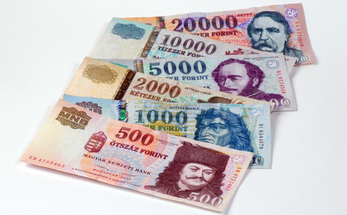 za práci v Maďarsku musí být plat stanoven a vyplácen v maďarských forintech